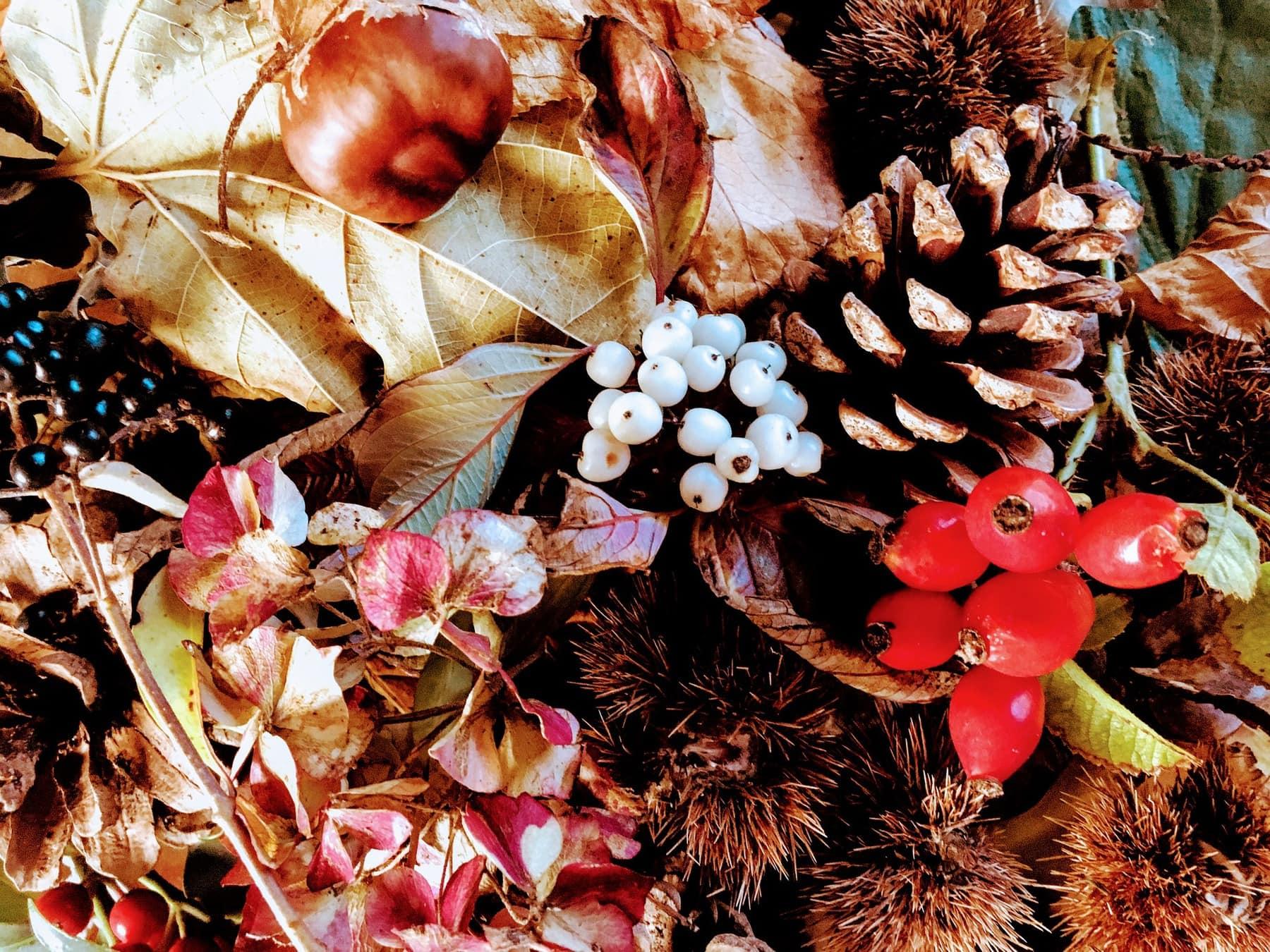 Herfst arrangement
